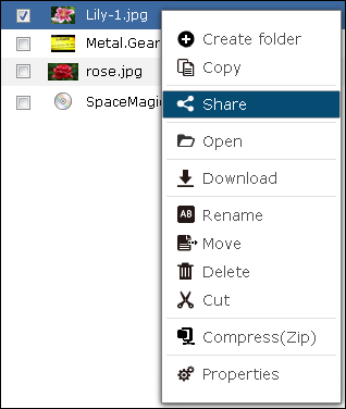 File Station: Access, Manage & Share Files On the Web